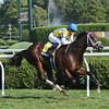Dominus wins the 2012 Bernard Baruch Handicap (gr. IIT). <br /> Coglianese Photos/Susie Raisher