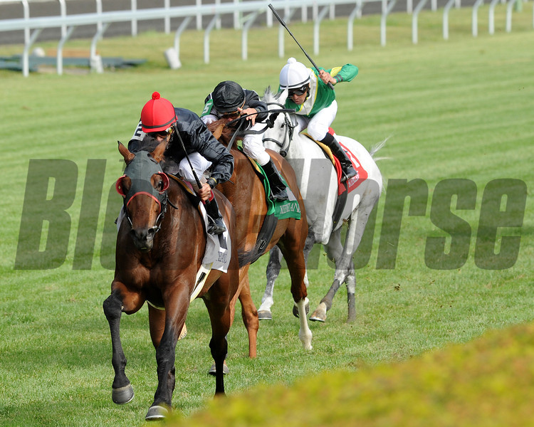 Keeneland Race Course; Lexington; KY 4/27/12; Point of Entry, John Velazquez up,  wins the Elkhorn Stakes<br /> photo by Mathea Kelley