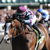 Simon Eyes, Julio Garcia up, wins 2yr old Maiden; , Keeneland Race Track; Lexington; KY 10/6/12 photo by Mathea Kelley
