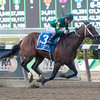 Dust and Diamonds wins the 2012 Gallant Bloom.<br /> Coglianese Photos