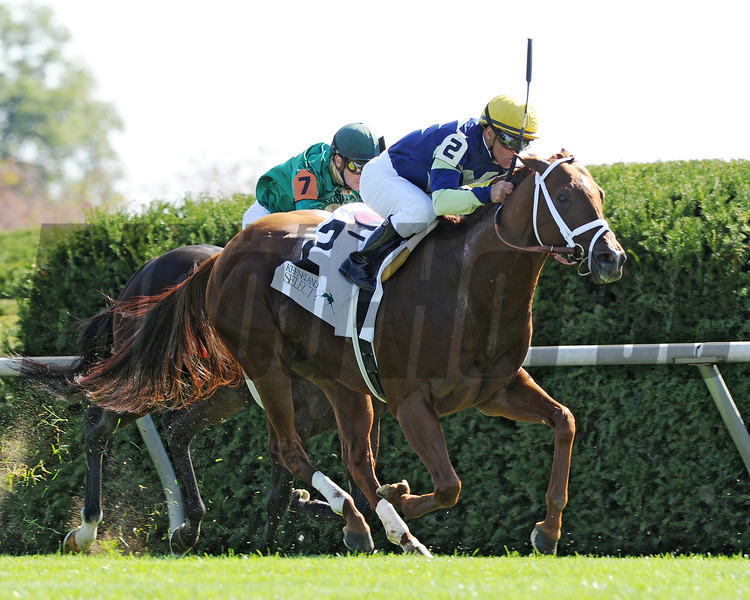 Bridgetown, Javier Castellano up, wins the Woodford, Keeneland Race Course, Lexingtion KY 10.6.12 photo by Mathea Kelley