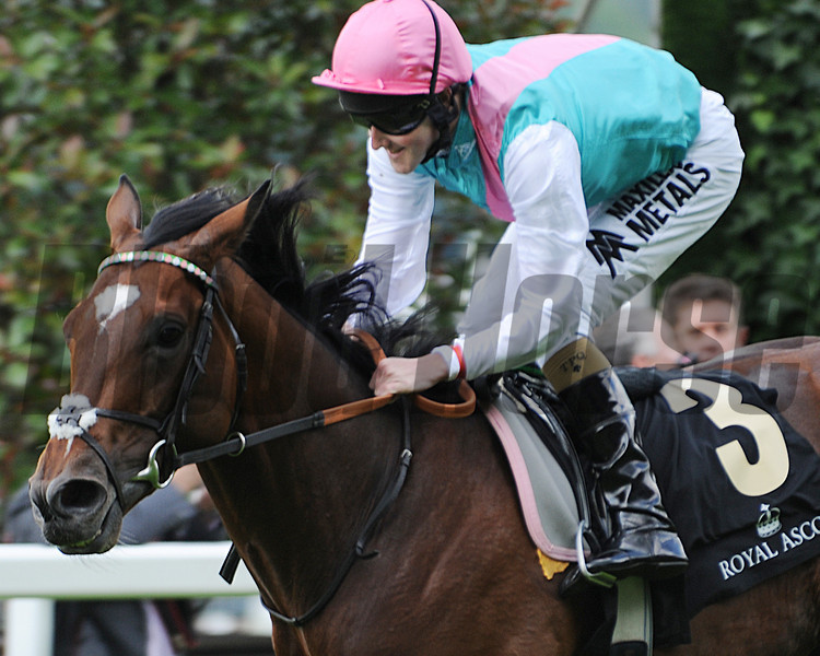Frankel; Tom Quelly up wins the Queen Anne Stakes; Royal Ascot 2012; photo by Mathea Kelley Ascot Race Course;