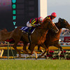 Gentildonna (Deep Impact x Donna Blini, Bertolini) wins a duel with Horse of the Year Orfevre in the final moments of the 32nd Japan Cup at Tokyo Racecourse on November 25th, 2012.<br /> Photo by Kate Hunter