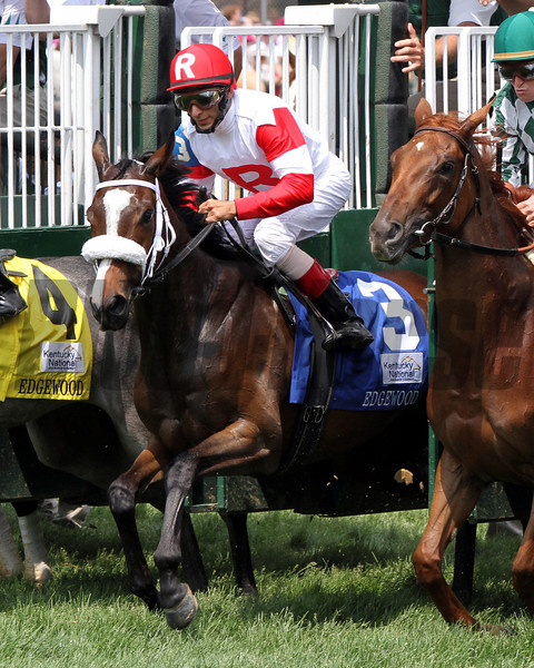 Stephanie's Kitten with John Velazquez up leaves the gate in good order and wins the 27th Running of The Edgewood at Churchill Downs on May 4, 2012.<br /> Photo by Chad Harmon