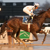 Kelli Got Frosty wins the 2012 East View Stakes.<br /> Coglianese Photos