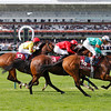 Whizz Kid (18) wins the Prix de l'Abbaye from Mayson (3) and Hamish McGonanagall, Longchamp 07/10/12