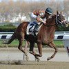 Sunny Desert wins the 2012 Staten Island Division of the NY Stallion Series.<br /> Coglianese Photos