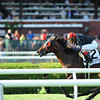 Point of Entry wins the 2012 Sword Dancer.<br /> Photo by Coglianese Photos/Adam Mooshian