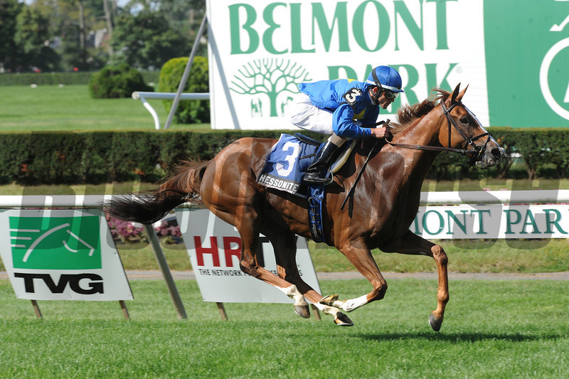 Hessonite wins the Swynford Stakes.<br /> Photo by Coglianese Photos