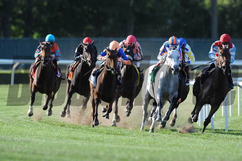 Samitar wins the 2012 Garden City.<br /> Photo by Coglianese Photos