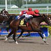Indiano wins the 2012 Mr. Prospector.<br /> Coglianese Photos/Leslie Martin