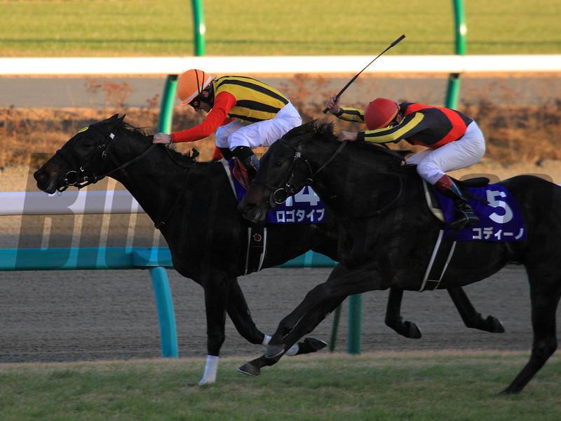 Logotype wins the Asahi Hai Futurity Stakes<br /> Photo by Naoji Inada