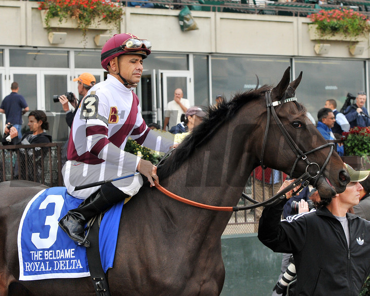 Royal Delta, Mike Smith up, prior to their win in the Gr1 Beldame Invitational at Belmont<br /> © 2012 Rick Samuels/The Blood-Horse