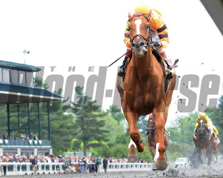 Keeneland Race Course; Lexington; KY 4/21/12; Wise Dan, John Velazquez up, wins the Ben Ali Stakes.<br /> Photo by Mathea Kelley