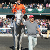 Tapitsfly, Jose Lezcano up, wins the First Lady Stakes; , Keeneland Race Track, Lexington, KY 10/6/12 photo by Mathea Kelley