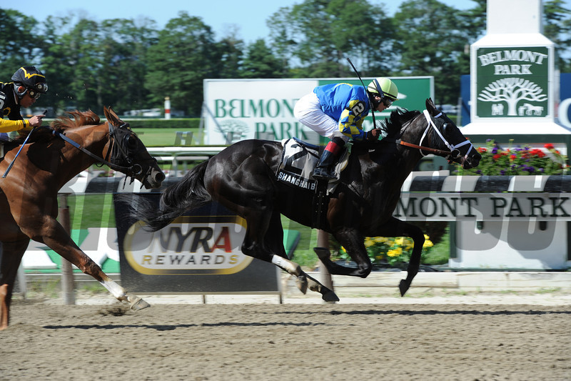 Shanghai Bobby wins the 2012 Champagne.<br /> Coglianese Photos