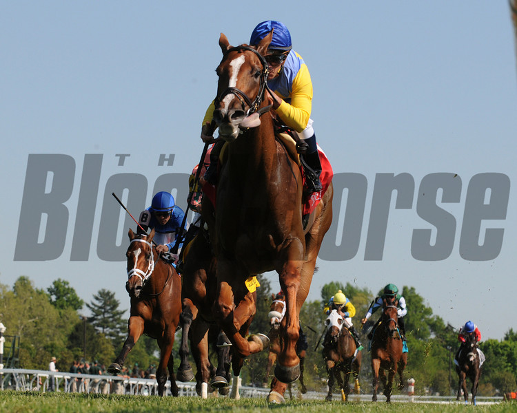 Keeneland Race Course; Lexington; KY 4/19/12; DayattheSpa, Javier Castellano up , wins the Appalachian Stakes.<br /> photo by Mathea Kelley