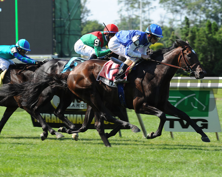 Summer Front wins the 2012 Hill Prince.<br /> Coglianese Photos