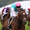 Royal Ascot 6/19/12 ƒrankel wins the Queen Anne photo by trevor jones