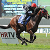 Point of Entry wins the 2012 Man o' War.<br /> Coglianese Photos
