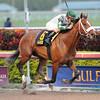 Mucho Macho Man wins the Millions Classic<br /> Coglianese Photos