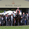 Black Caviar at Royal Ascot<br /> Photo by Trevor Jones