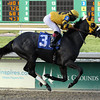 Mylute wins Race 7 at Fair Grounds on December 26, 2012 Photo by: Hodges Photography / Lou Hodges Jr.