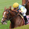 Dayatthespa, Javier Castellano up, wins the QEII Challenge Cup, Keeneland Race Track, Lexington, KY, photo by Mathea Kelley