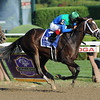 Love and Pride wins the 2012 Personal Ensign.<br /> Coglianese Photos/Courtney Stafford