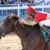 9/8/2012  -  Bourbon Courage with jockey Leandro Goncalves up wins the 33rd running of the Grade II $500,000 Super Derby at Louisiana Downs.  <br /> Photo by: Hodges Photography / Lynn Roberts