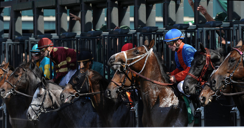 Starting Gate, Keeneland Race Track; Lexington; KY 10/5/12 photo by Mathea Kelley