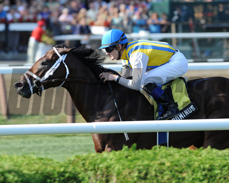 Dominus wins the 2012 Bernard Baruch Handicap (gr. IIT). <br /> Coglianese Photos/Adam Mooshian