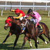 Jack Milton (inside) and jockey John Velazquez wins the 2013 Transylvania Stakes at Keeneland.<br /> Kevin Thompson Photo
