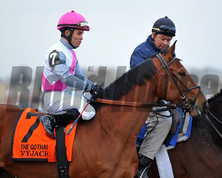Vyjack, Joel Rosario up, Gr3 Gotham Stakes at Aqueduct...<br /> © 2013 Rick Samuels/The Blood-Horse