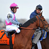 Vyjack, Joel Rosario up, Gr3 Gotham Stakes at Aqueduct...<br /> © 2013 Rick Samuels/The Blood-Horse