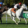 Za Approval wins the 2013 Knickerbocker.<br /> Coglianese Photos