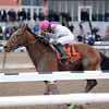 Vyjack wins the 2013 Gotham.<br /> Coglianese Photos/Joe Labozzetta