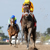 Kauai Katie wins the 2013 Old Hat Stakes.<br /> Coglianese Photos