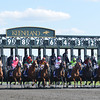 Winning Cause, Julien Leparoux up, wins the Coolmore Lexington, Keeneland Race Track, Lexington KY<br /> ©Photo by Mathea Kelley 4/20/13