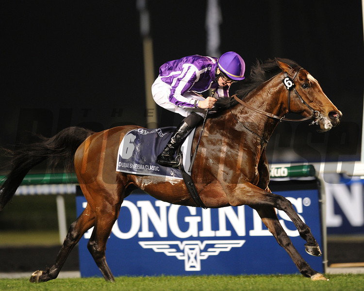 St Nicholas Abbey, Joseph Obrien up, wins the Dubai Sheema Classic  , Meydan, March 30th, 2013, photo by Mathea Kelley<br /> Dubai World Cup Day