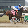 Elnaawi, 3yo colt by Street Sense, breaks his maiden at Aqueduct on January 22, 2013.<br /> Coglianese Photos