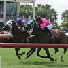 Alley Oop Oop wins the Armed Forces Stakes<br /> Jockey: Fernando Jara<br /> GULFSTREAM PARK, Hallandale, FL<br /> Purse: $100,000<br /> Date: July 4, 2013<br /> Class:<br /> TV: HRTV<br /> Age: 3 yo's & up<br /> Race: 7<br /> Distance: One And One Sixteenth Miles<br /> Post Time: 3:32 PM<br /> Photo by: Kenny Martin/Coglianese Photos