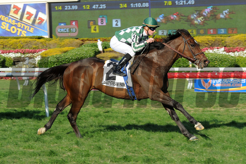Centre Court wins the 2013 Honey Fox.<br /> Coglianese Photos/Leslie Martin