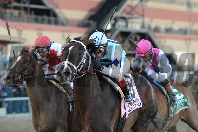 Verrazano wins the 2013 Wood Memorial.<br /> Coglianese Photos/Adam Mooshian