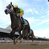 Palace Malice wins the 2013 Jim Dandy.<br /> Coglianese Photos