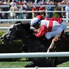 Seal Cove - Allowance Win, July 24, 2013.<br /> Coglianese Photos/Adam Mooshian