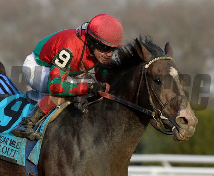 Flat Out wins the 25th running of The Cigar Mile at Aqueduct Nov. 30, 2013, in Ozone Park, N.Y.  Photo ©Skip Dickstein 2013