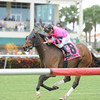 Bad Debt wins the 2013 Millions Turf Preview Stakes.<br /> Coglianese Photos