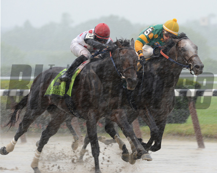 Souper Speedy (left) wins the 2013 Jaipur via disqualification.<br /> Coglianese Photos