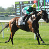King Kressa wins the 2013 Kingston Stakes.<br /> Coglianese Photos